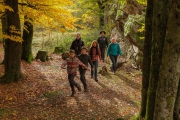 Den Saar-Hunsrück-Steig Wanderweg des Jahres 2017 6