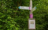 Rheingold Wanderung 20