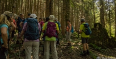 Wanderung zu den Thorau Almen 17