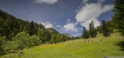 Wanderung zu den Thorau Almen 44