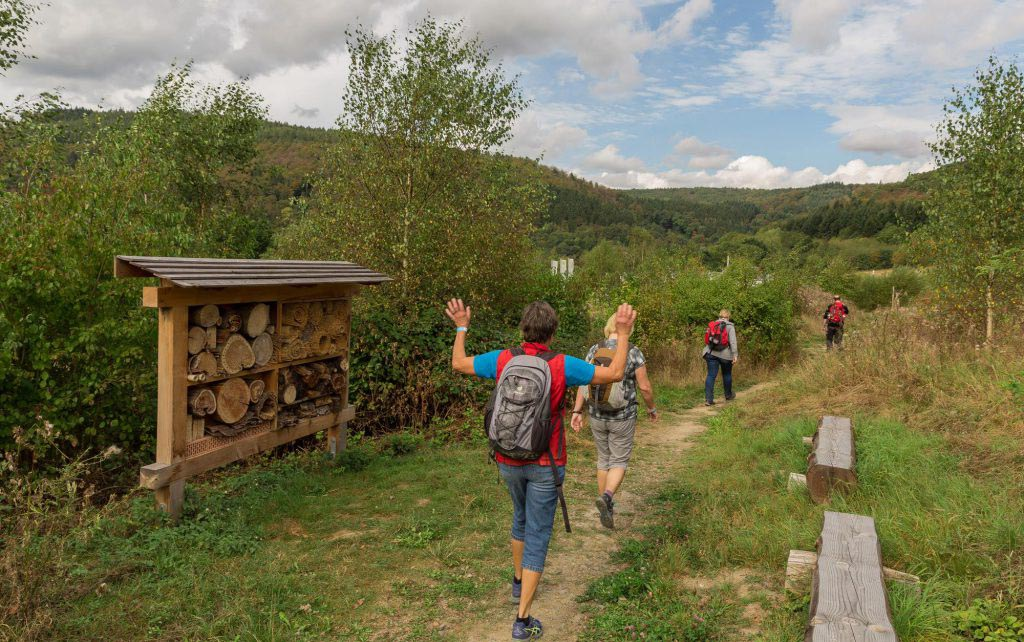 Der Diemelsteig - Uriger Wanderweg am Diemelsee 93