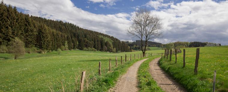 Wanderweg Zeichenkurs im Sauerland 2