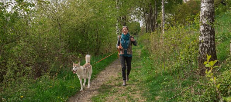 Wanderweg Zeichenkurs im Sauerland 3