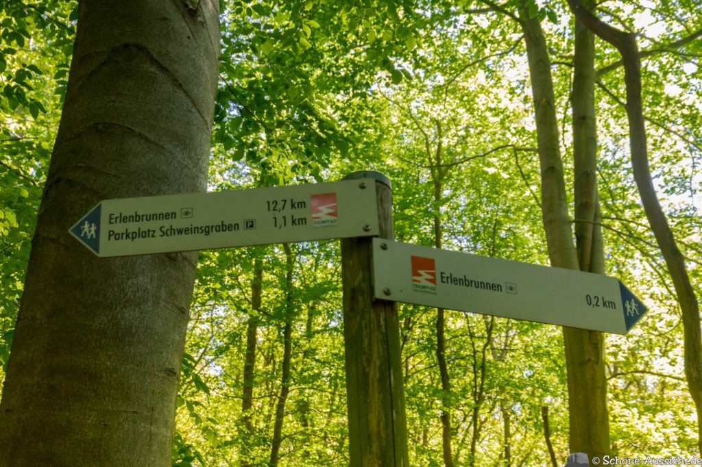 Traumpfad Vier-Berge-Tour - Die Vulkaneifel von oben erleben. 51
