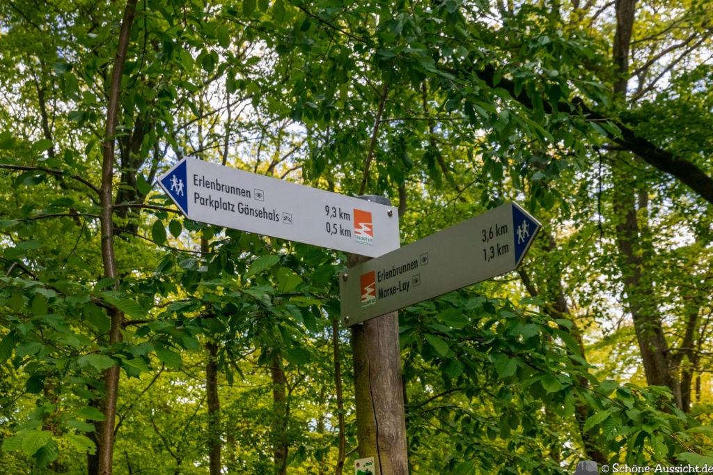 Traumpfad Vier-Berge-Tour - Die Vulkaneifel von oben erleben. 34
