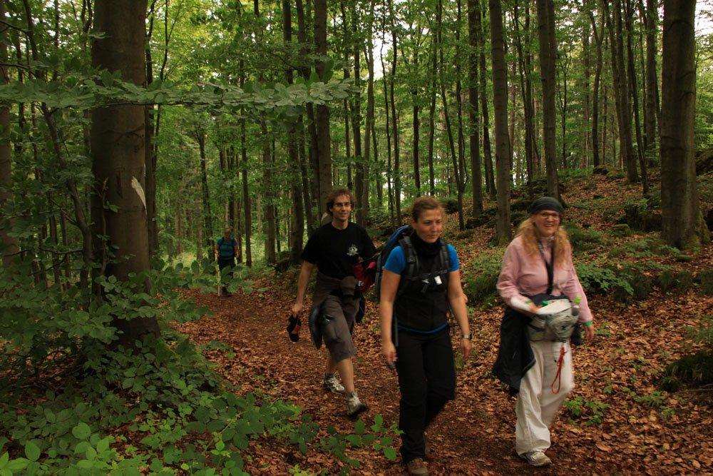 24h Wanderung im Schwarzwald 2 1