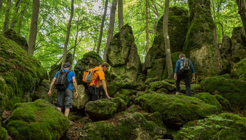 Wandern in Bayern 8