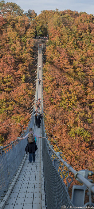 Geierlay - Die Hunsrück-Hängebrücke 7