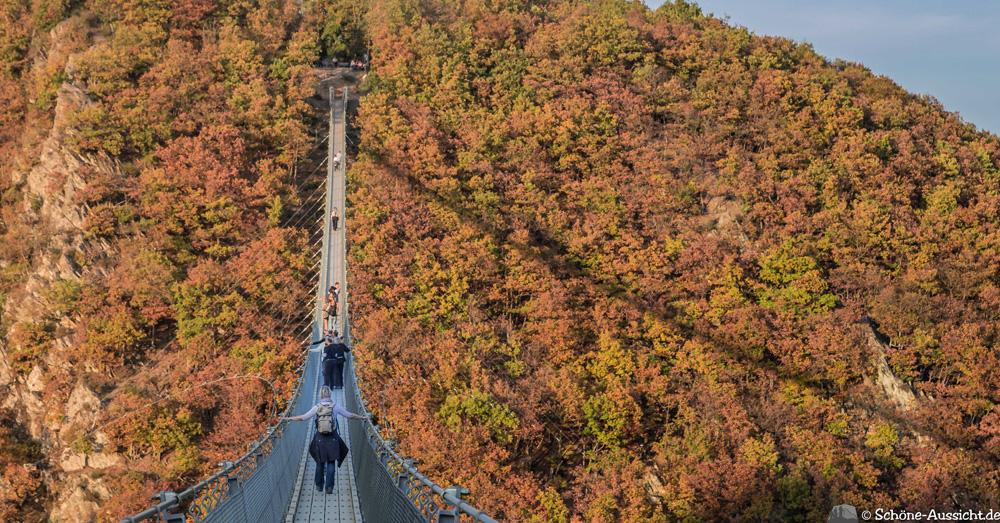Geierlay - Die Hunsrück-Hängebrücke 12