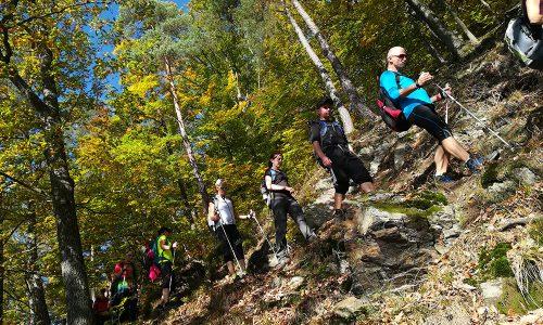 24h Wanderung Donausteig pur in Oberösterreich 5