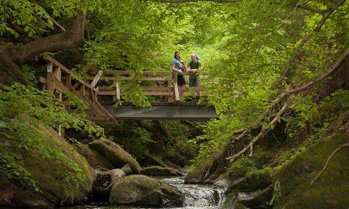 Abgesagt: Saar-Hunsrück-Steig Wandermarathon 36
