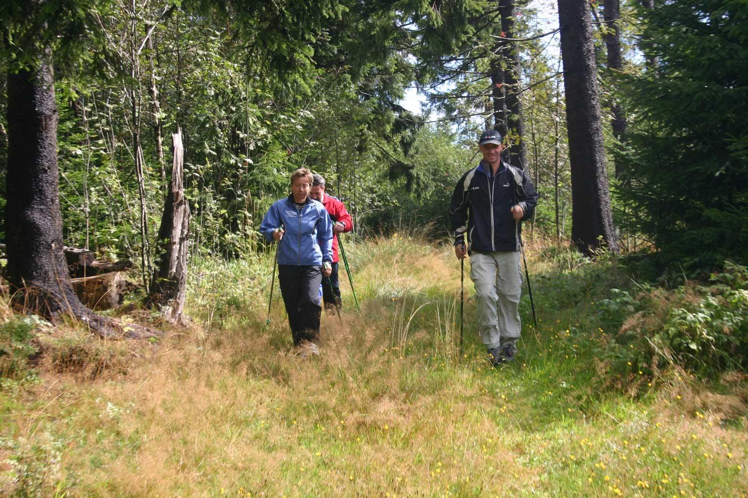 Wandertag Bayerischer Wald 1