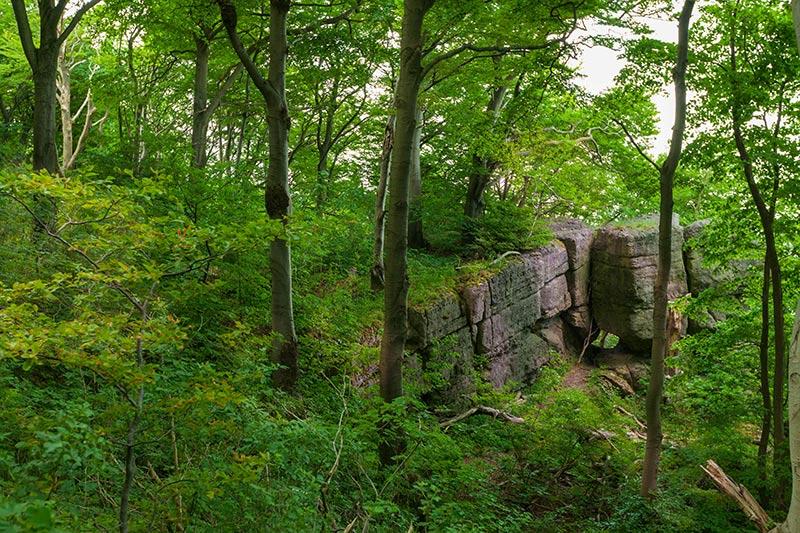 Ith-Hils-Weg - Top Wanderweg im Weserbergland 5