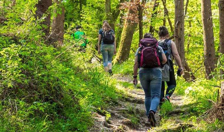 Bergschluchtenpfad Ehrenburg 12