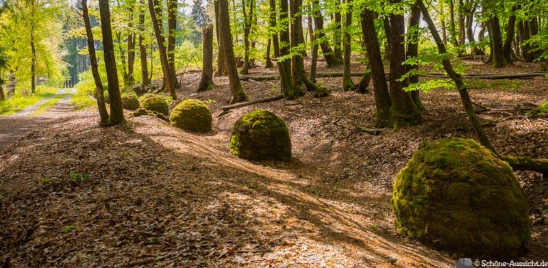 Der Kultour Wanderweg in Drolshagen 36