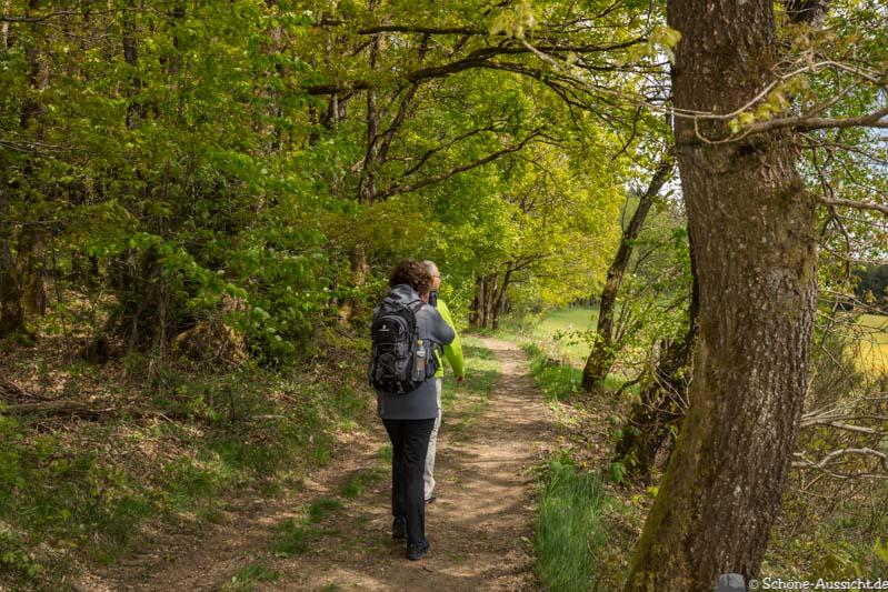 Der Kultour Wanderweg in Drolshagen 28
