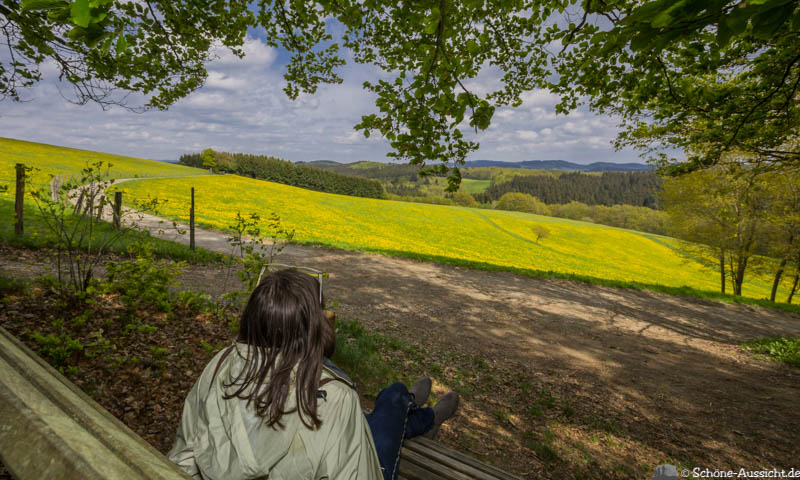 Der Kultour Wanderweg in Drolshagen 41