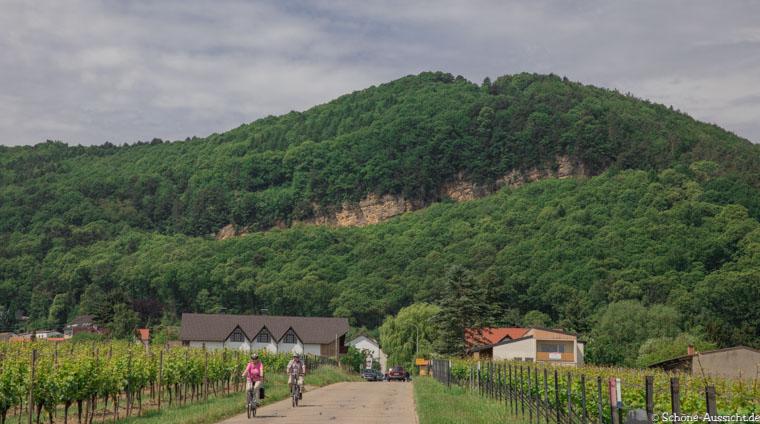 Pfälzer Hüttentour - Die Pflichttour in der Pfalz 6