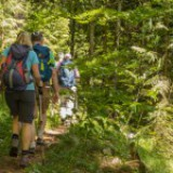 Wanderung zu den Thorau Almen