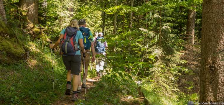 Wanderung zu den Thorau Almen 5