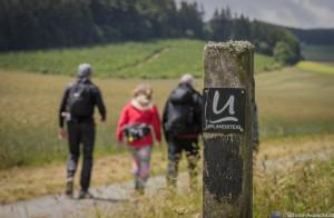 Wanderevents an Nord- und Ostsee 296