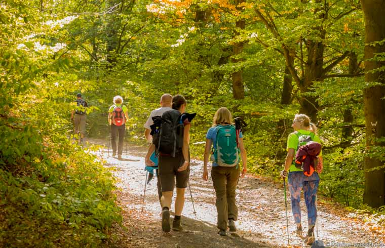 Wandern und Nordic Walking Marathon zum Rennsteiglauf 1