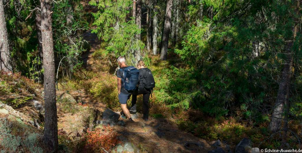 Sörknatten Naturreservat - Auf den Spuren von Ronja Räubertochter 52