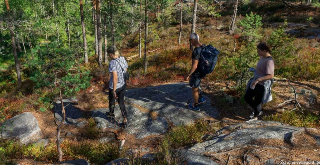 Sörknatten Naturreservat - Auf den Spuren von Ronja Räubertochter 51