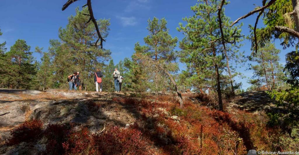 Sörknatten Naturreservat - Auf den Spuren von Ronja Räubertochter 46