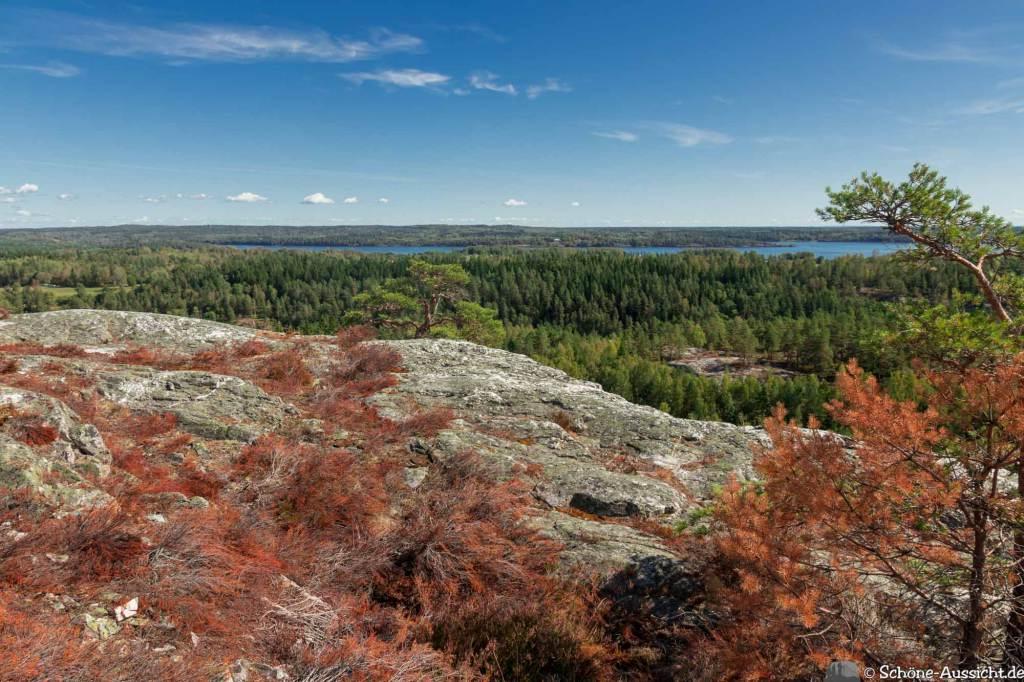 Sörknatten Naturreservat - Auf den Spuren von Ronja Räubertochter 79