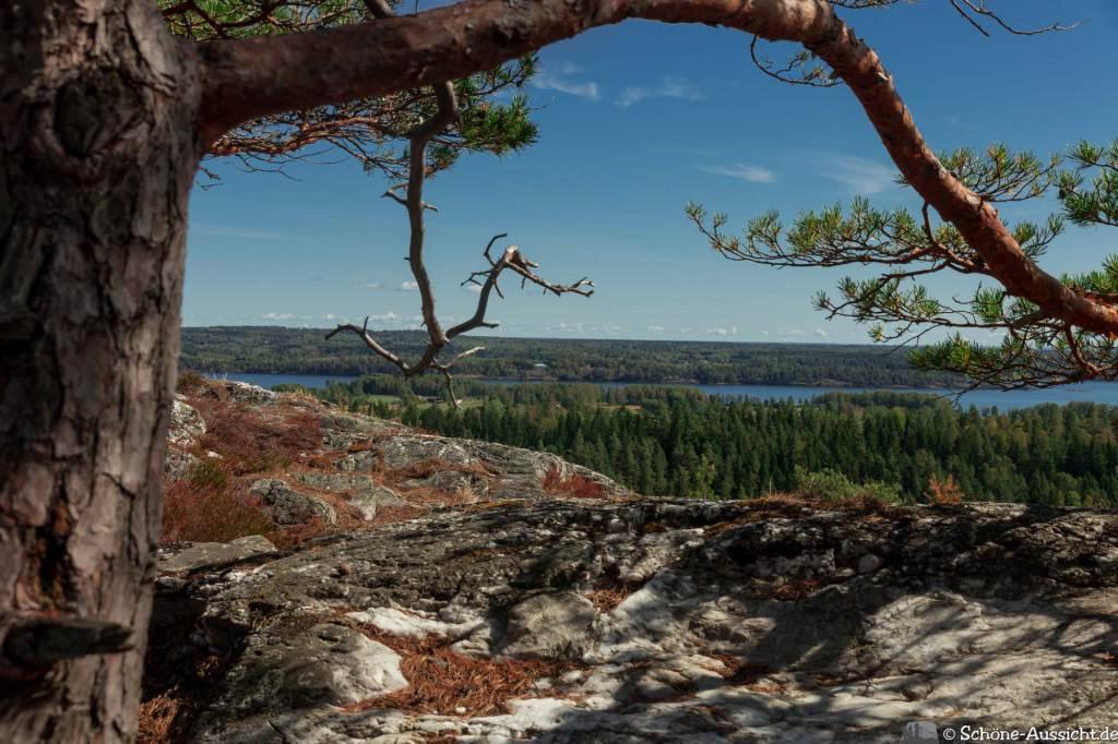 Sörknatten Naturreservat - Auf den Spuren von Ronja Räubertochter 76