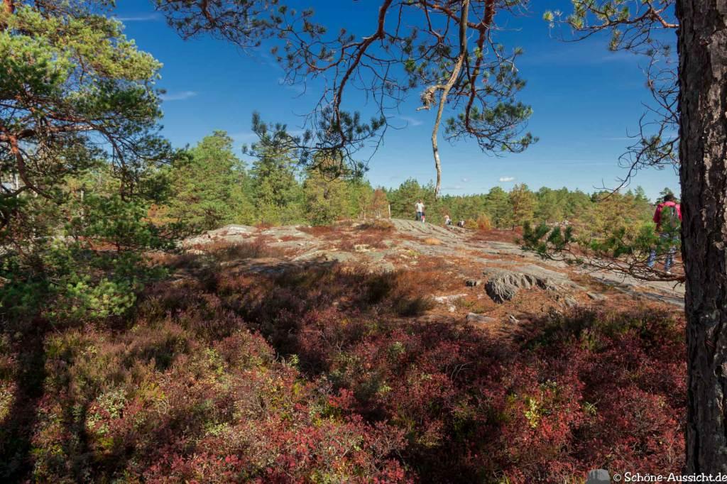 Sörknatten Naturreservat - Auf den Spuren von Ronja Räubertochter 55