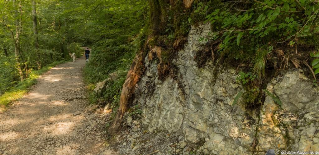 Kozjak Wasserfall 30