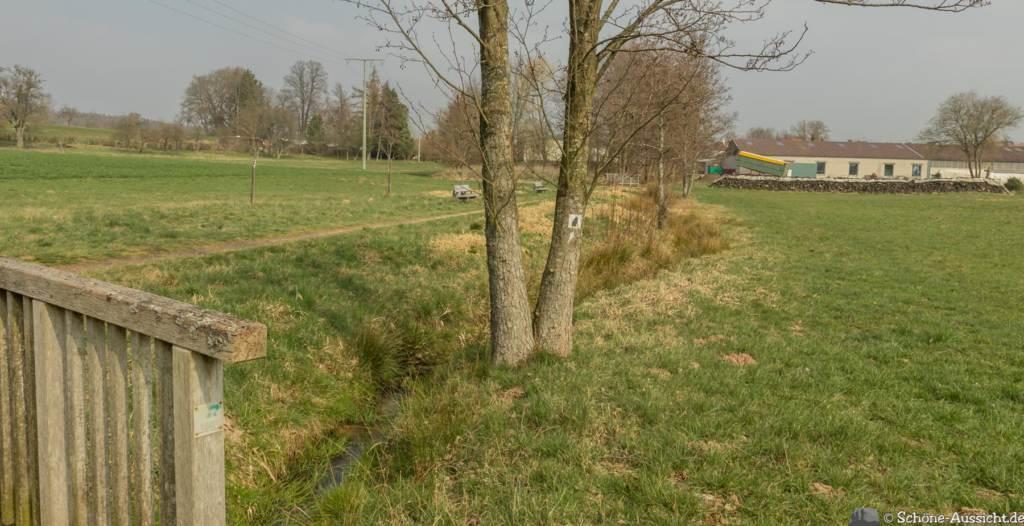 Hinkelstein Wandermarathon 33