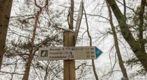 Hinkelstein Wandermarathon 36