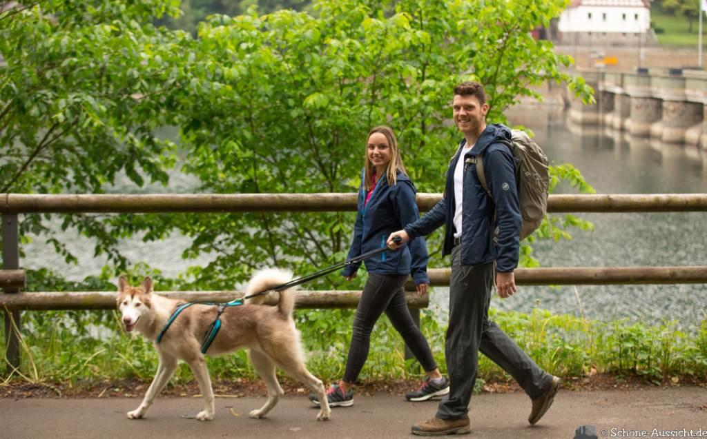 Der Diemelsteig - Uriger Wanderweg am Diemelsee 84