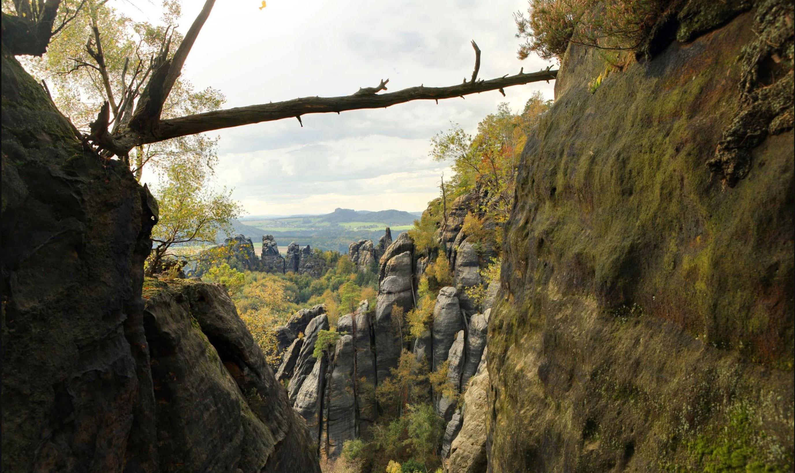50 km & 25 km in die Sächsische Schweiz 1