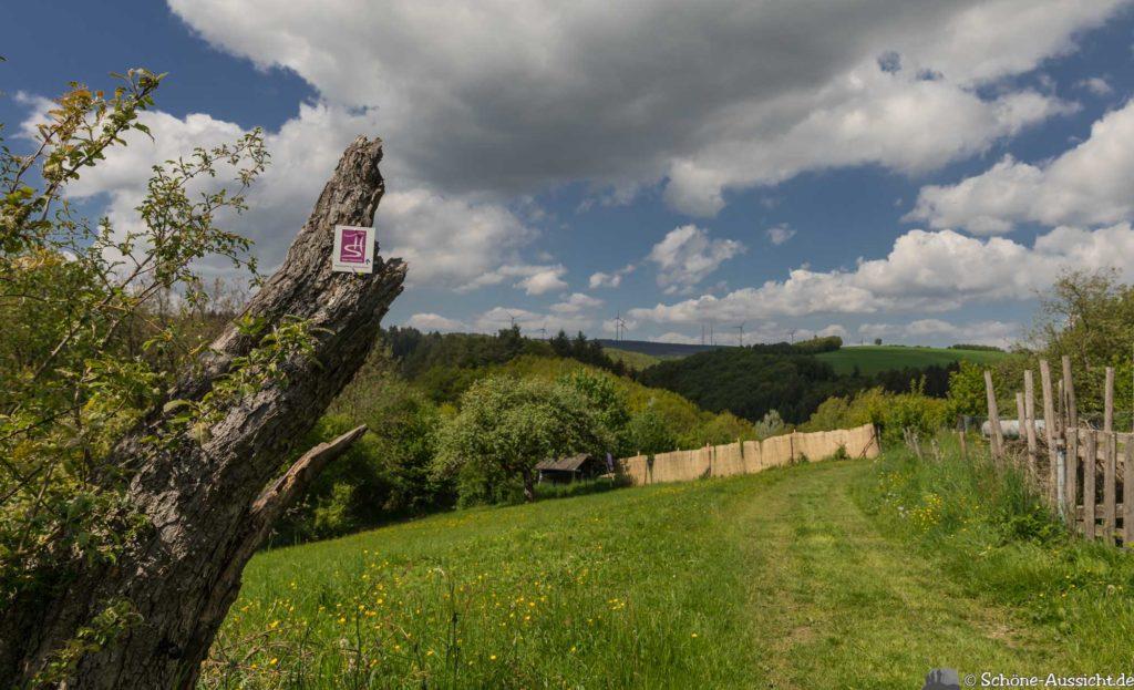 Oberstaufen - Von Steibis und den schönsten Wanderideen 9