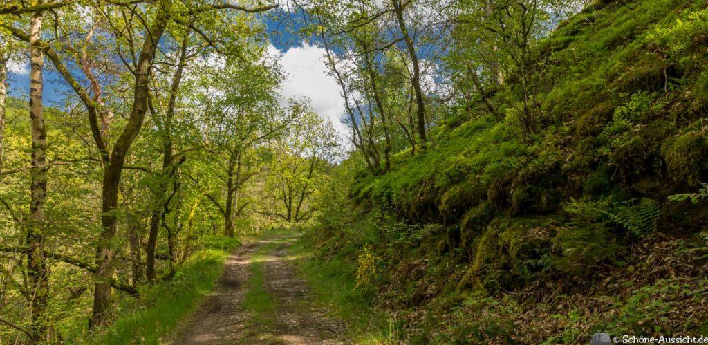 Oberstaufen - Von Steibis und den schönsten Wanderideen 17