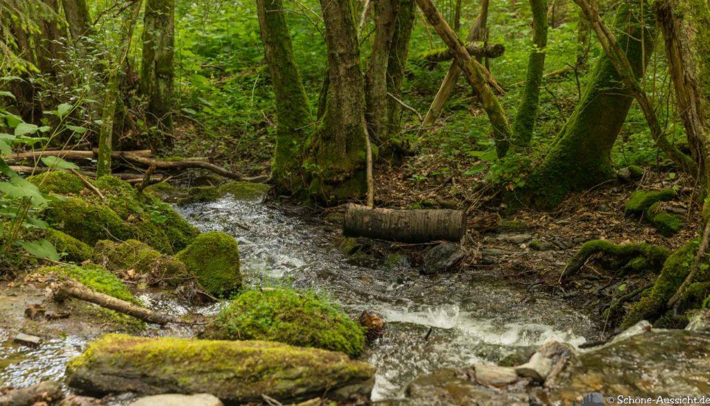 Oberstaufen - Von Steibis und den schönsten Wanderideen 26