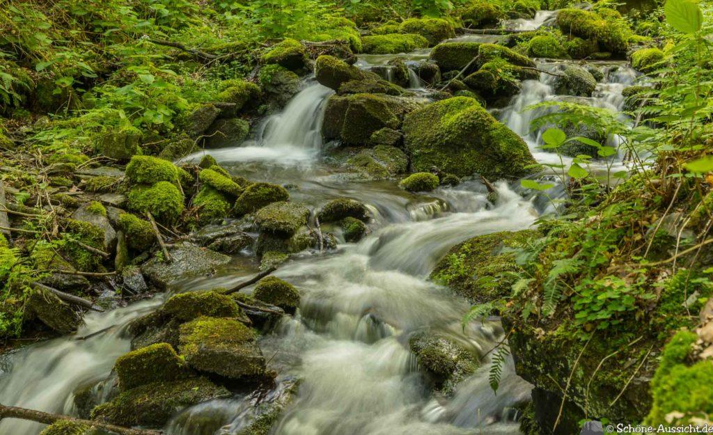 Oberstaufen - Von Steibis und den schönsten Wanderideen 28
