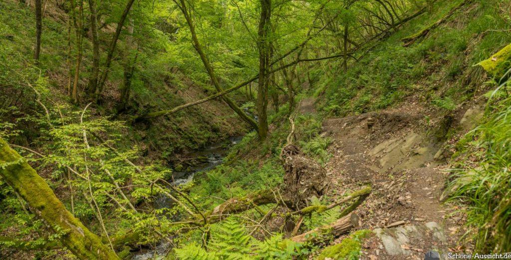 Oberstaufen - Von Steibis und den schönsten Wanderideen 32