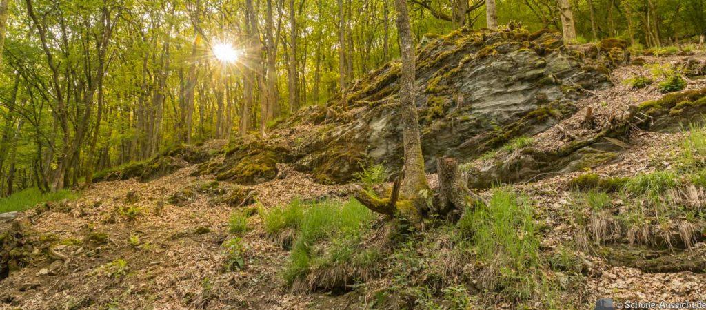 Oberstaufen - Von Steibis und den schönsten Wanderideen 33