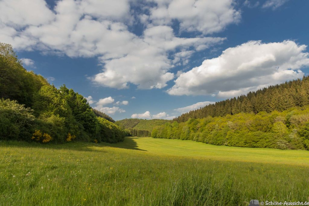Oberstaufen - Von Steibis und den schönsten Wanderideen 34