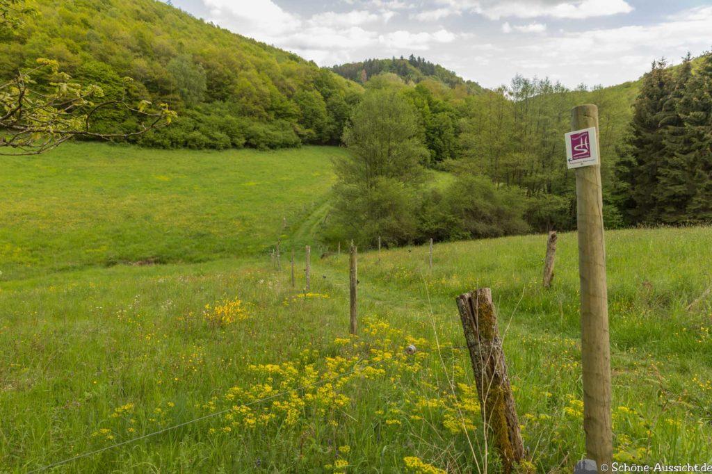 Oberstaufen - Von Steibis und den schönsten Wanderideen 37