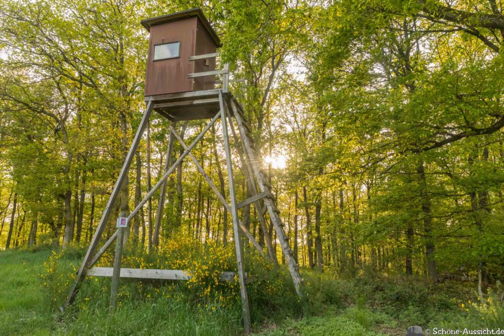 Oberstaufen - Von Steibis und den schönsten Wanderideen 45