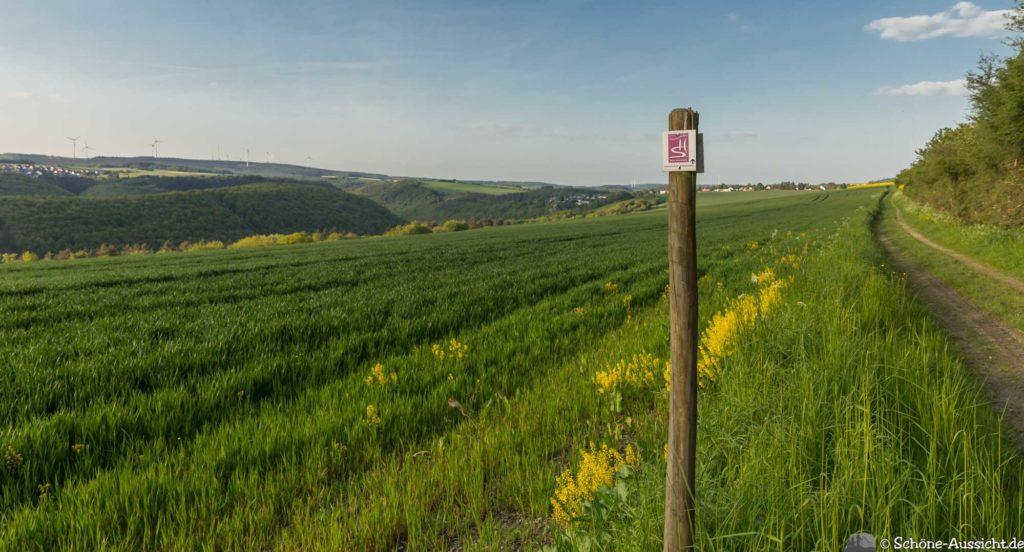 Oberstaufen - Von Steibis und den schönsten Wanderideen 46