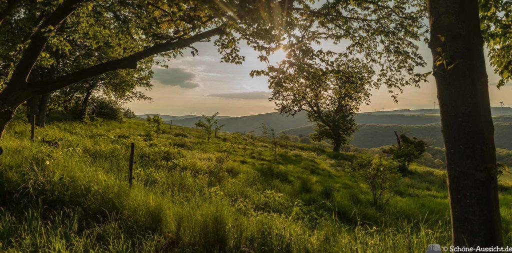 Oberstaufen - Von Steibis und den schönsten Wanderideen 48