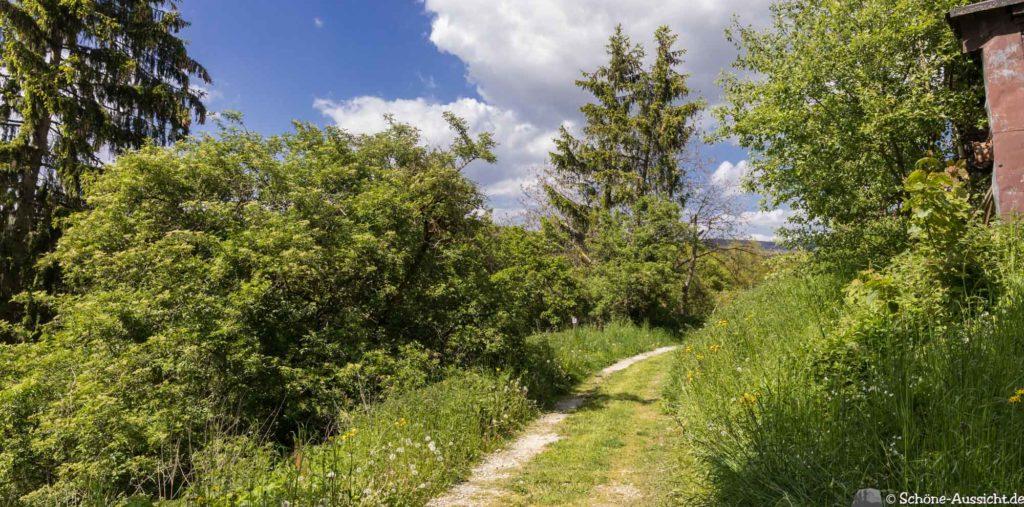 Oberstaufen - Von Steibis und den schönsten Wanderideen 8