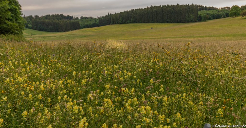 Traufgang Zollernburg-Panorama 45